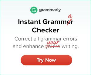 01-02-correcting-instant-grammar-checker-300x250